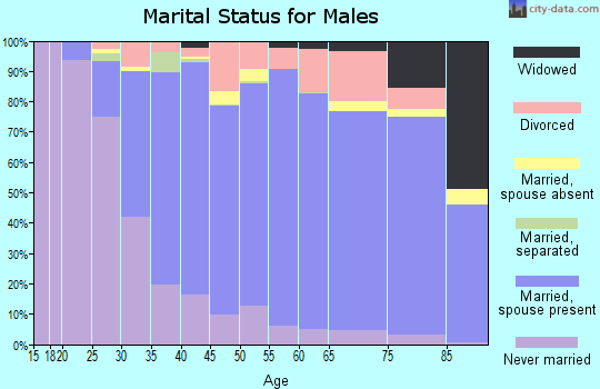 Zip code 08094 marital status for males