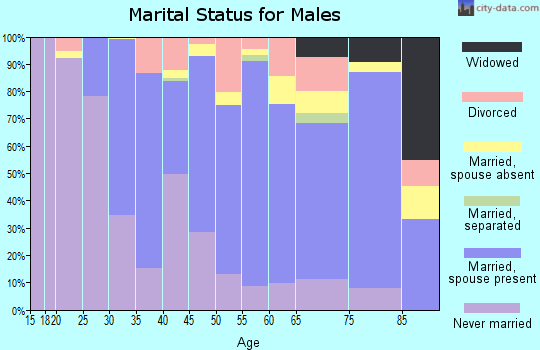 Zip code 08201 marital status for males