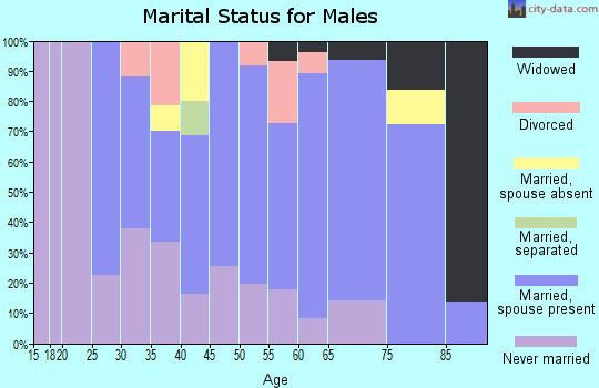 Zip code 08343 marital status for males