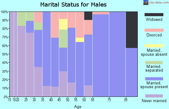 Zip code 08554 marital status for males