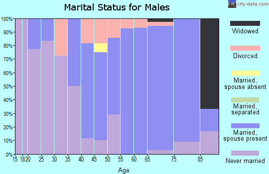 Zip code 08732 marital status for males