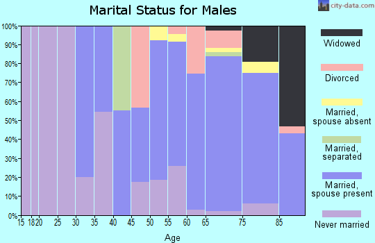 Zip code 08735 marital status for males