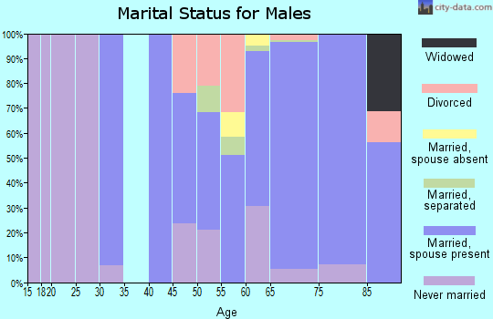 Zip code 08738 marital status for males