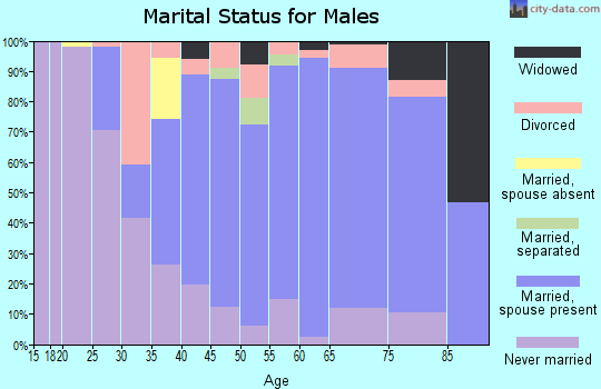 Zip code 08826 marital status for males