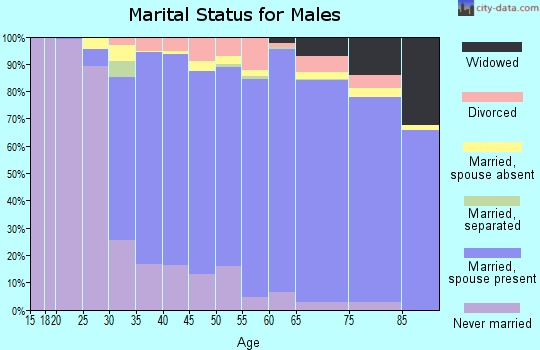 Zip code 08831 marital status for males