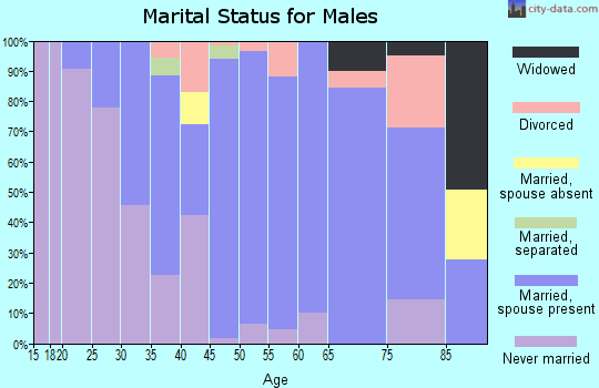 Zip code 08850 marital status for males