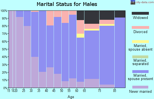 Zip code 08863 marital status for males
