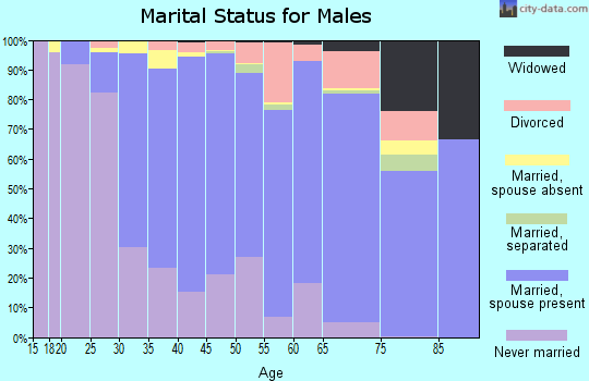 Zip code 08876 marital status for males