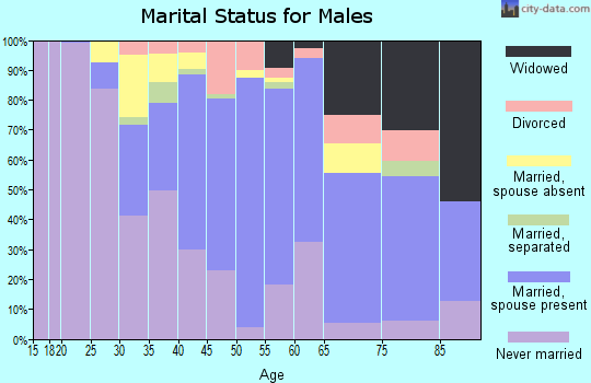 Zip code 08882 marital status for males