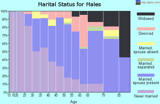 Zip code 10038 marital status for males