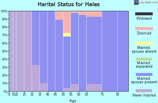 Zip code 10506 marital status for males