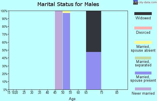 Zip code 10519 marital status for males