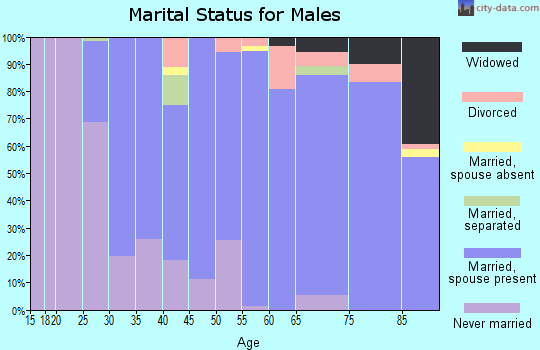 Zip code 10589 marital status for males