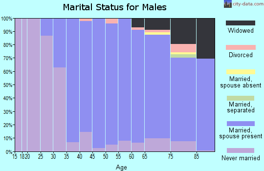 Zip code 10804 marital status for males