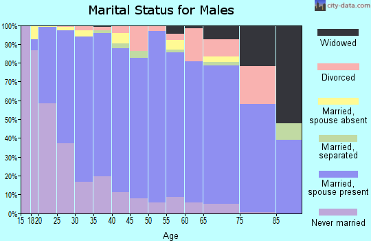 Zip code 10950 marital status for males
