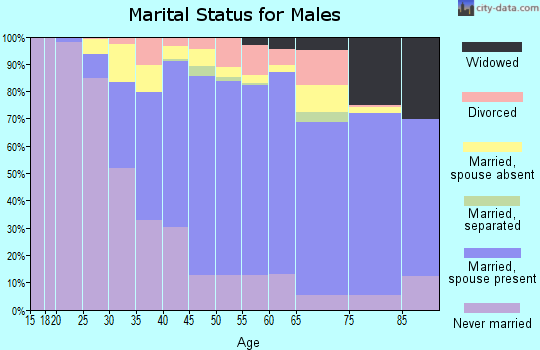 Zip code 11003 marital status for males