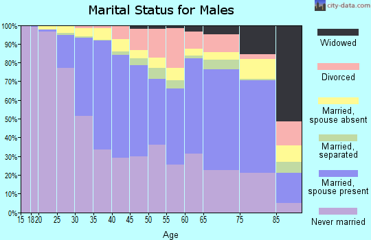 Zip code 11201 marital status for males