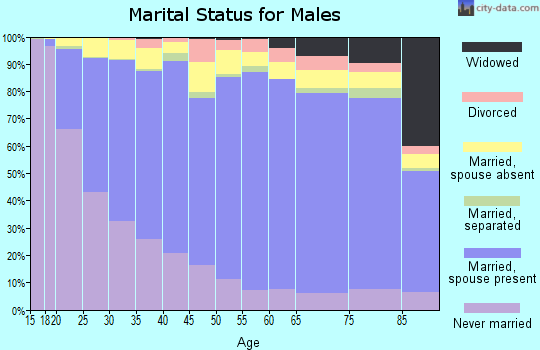 Zip code 11219 marital status for males