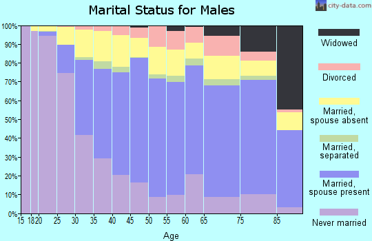 Zip code 11220 marital status for males
