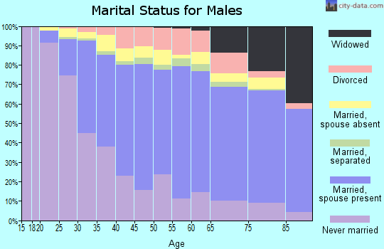 Zip code 11385 marital status for males