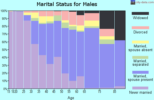 Zip code 11413 marital status for males