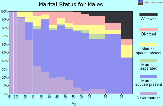 Zip code 11417 marital status for males