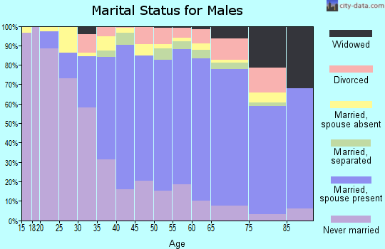 Zip code 11427 marital status for males