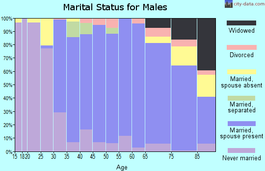 Zip code 11577 marital status for males