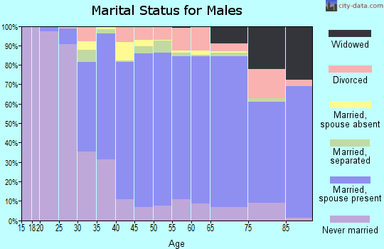 Zip code 11580 marital status for males