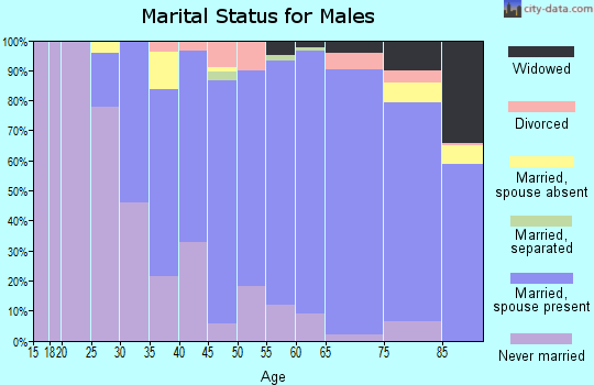 Zip code 11596 marital status for males