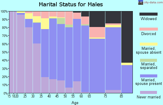 Zip code 11720 marital status for males