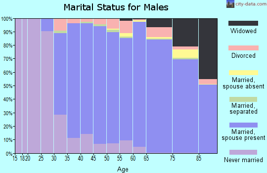 Zip code 11725 marital status for males
