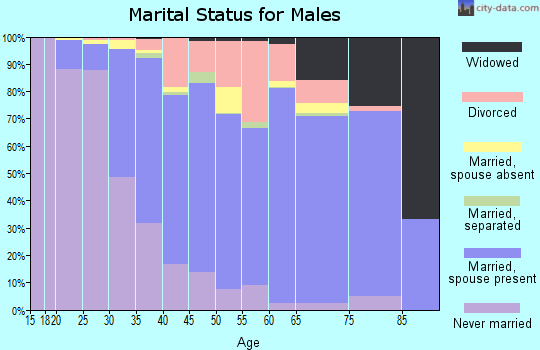 Zip code 11727 marital status for males