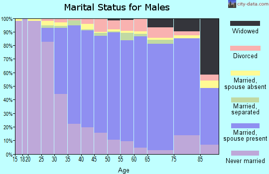 Zip code 11743 marital status for males