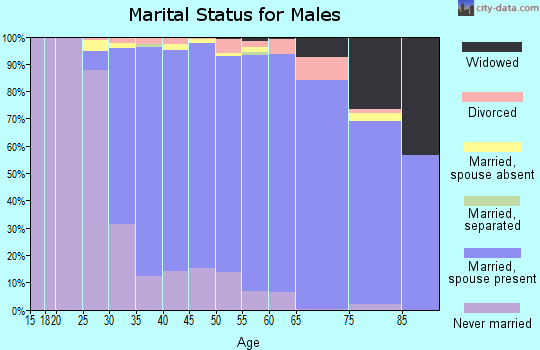 Zip code 11762 marital status for males
