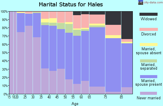 Zip code 12010 marital status for males