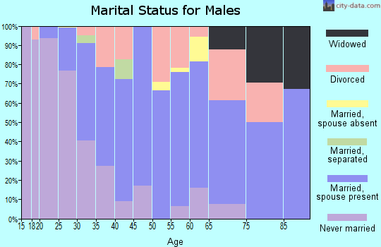 Zip code 12025 marital status for males