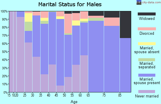 Zip code 12072 marital status for males