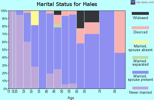 Zip code 12143 marital status for males
