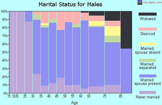 Zip code 12186 marital status for males
