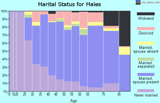 Zip code 12302 marital status for males