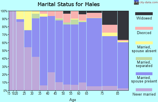 Zip code 12309 marital status for males