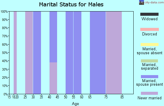 Zip code 12460 marital status for males