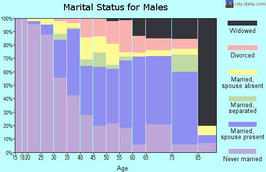 Zip code 12508 marital status for males