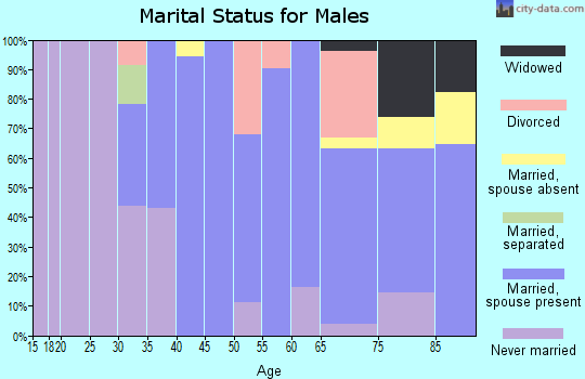 Zip code 12531 marital status for males