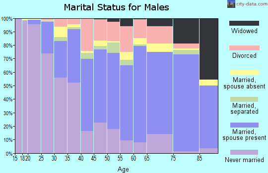 Zip code 12901 marital status for males