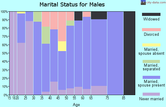 Zip code 12916 marital status for males