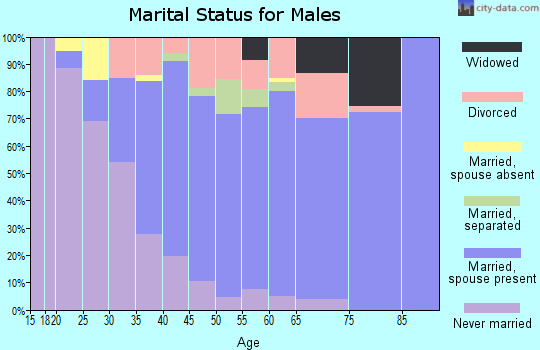 Zip code 13036 marital status for males