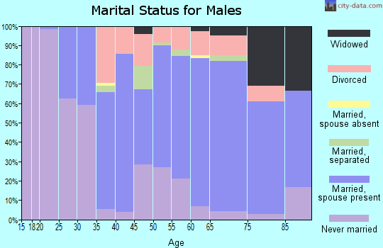 Zip code 13040 marital status for males