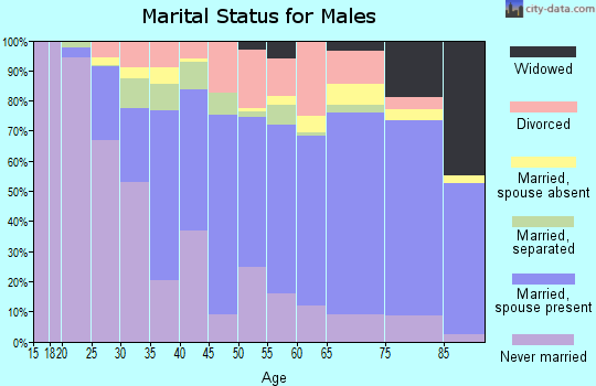 Zip code 13088 marital status for males